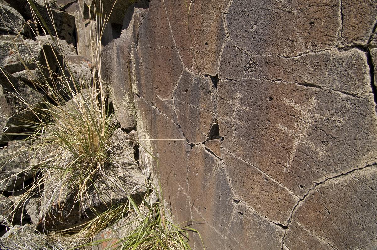 Swan Lake Petroglyphs